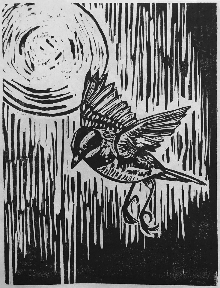 Great Migration Study, Black and White Warbler